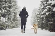 Погода в Воронеже: идут афанасьевские морозы