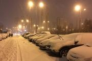 Климат Москвы: крещенская декада января отдала предпочтение снежной эстетике