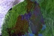 Последствия крупного лесного пожара на Камчатке: фото со спутника