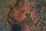 НАСА показало невероятный снимок поверхности Марса