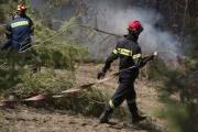 Греция обратилась к ЕС с просьбой о помощи в тушении пожаров