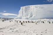 Восточно-антарктический ледяной щит не растает
