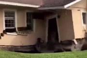 Карстовая воронка поглотила часть дома во Флориде: видео