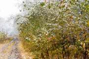 Юг Восточной Сибири: сентябрь порадовал снегом
